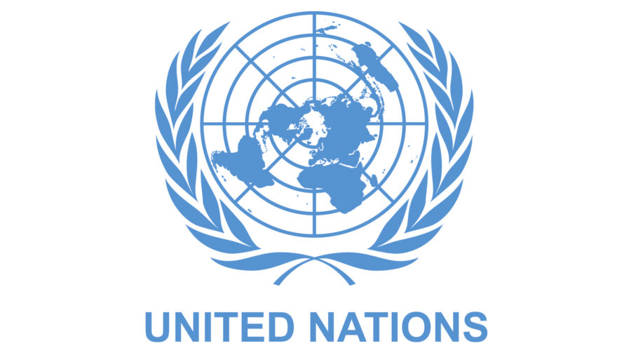 Flag United Nations Logo